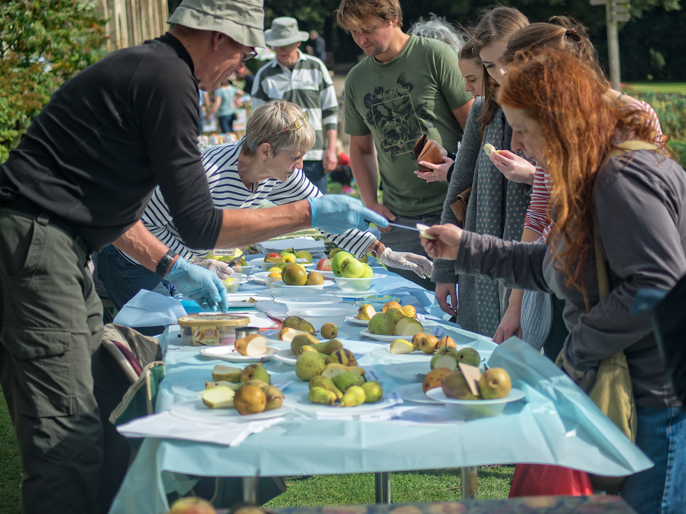 Pear Festival 2017 Cannon Hall