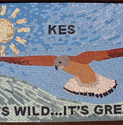 Kes mosaic in Athersley