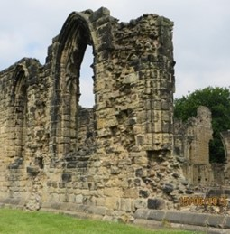 Visit to Monk Bretton Priory (17)